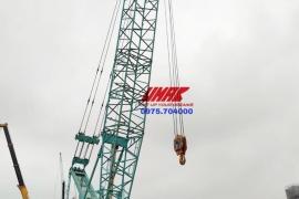 Cho thuê cẩu bánh xích 250 tấn tại UMAC Việt Nam